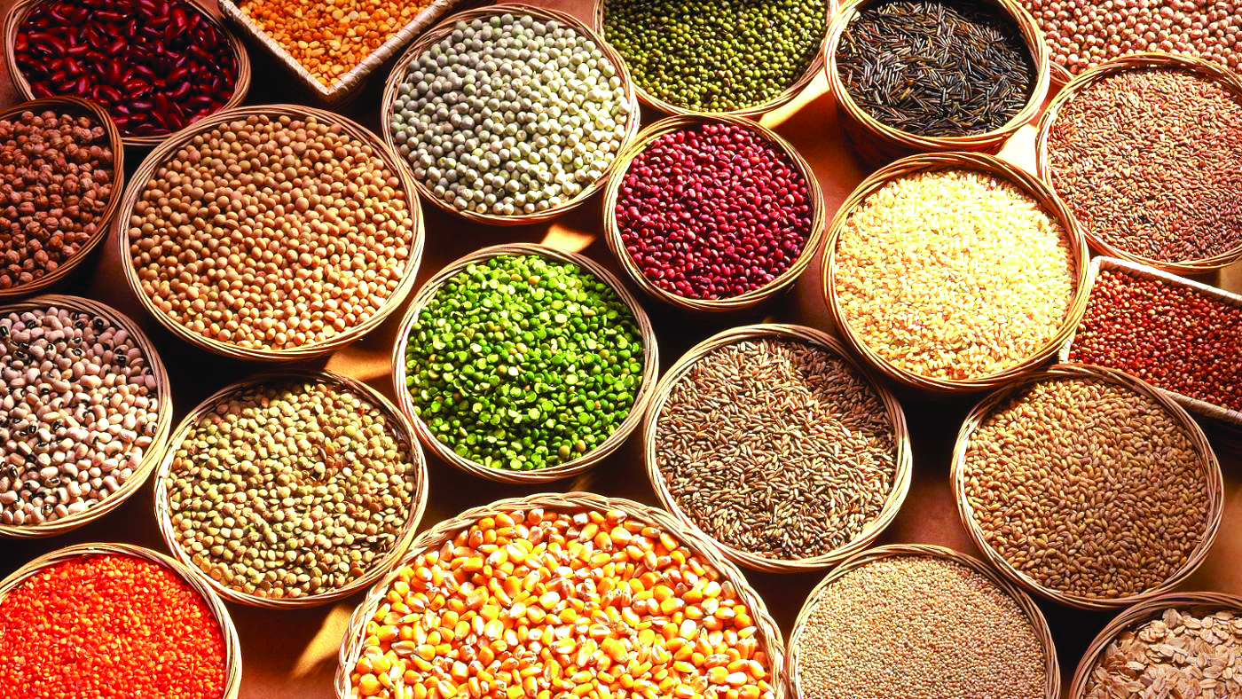 different-types-grains_4fdc5c692f79d253
